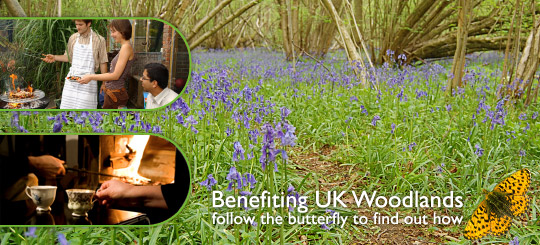 Benefiting UK Woodlands